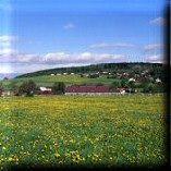 Agroturystyka Gazdówka - widok na budynek (kliknięcie spowoduje powiększenie obrazu)
