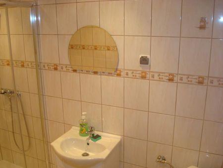 Agroturystyka u Doroty - łazienka (kliknięcie spowoduje powiększenie obrazu)