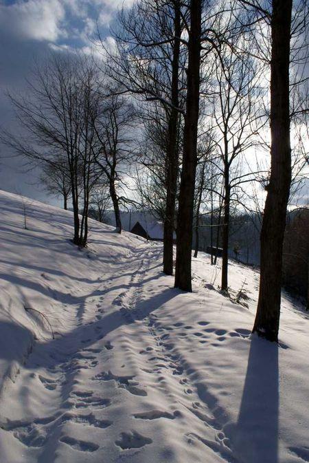 Teren wokół agroturystyki U Madzi zimą. (kliknięcie spowoduje powiększenie obrazu)