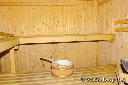 Mira-S - sauna (kliknięcie spowoduje powiększenie obrazu)