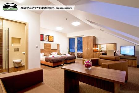 Apartament w budynku SPA jednopokojowy (kliknięcie spowoduje powiększenie obrazu)