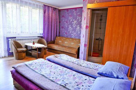 Pokoje gościnne Grzegorz - pokój (kliknięcie spowoduje powiększenie obrazu)