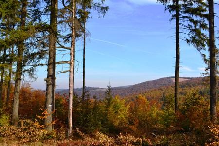 Bajkowy Szlak Utopca - widok z stronę Kotarza (kliknięcie spowoduje powiększenie obrazu)