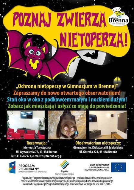 Plakat promujący obserwatorium nietoperzy (kliknięcie spowoduje powiększenie obrazu)