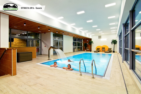 Strefa SPA - basen (kliknięcie spowoduje powiększenie obrazu)